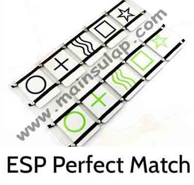 EspPerfectMatchBoard